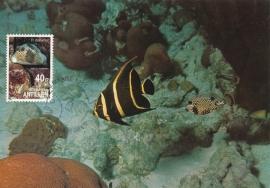 ®® 1991 NVPH 969 NED. ANTILLEN Tropische vissen