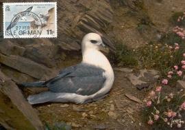 1979 ISLE OF MAN - Seagull