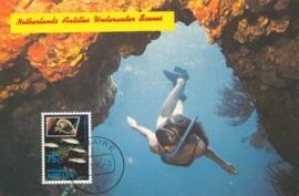 ®® 1991 NVPH 971 NED. ANTILLEN Tropische vissen