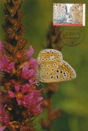 ® 1993 - CATA 1556 Icarusblauwtje