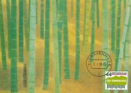 ® 2008 - CATA 2554 Bomen