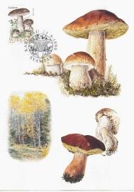 1996 SWEDEN - Mushroom Cep