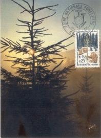 1966 FRANCE - Trees