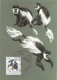 1986 GERMANY DDR Guereza monkey