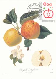 þþþ - Fruit 2015 Appel