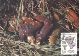 1987 FRANCE - Mushroom Gomphus