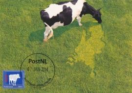 ® 2014 - CATA 3146 Hollandse koe