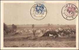 © 1921 - Central Lithuania - Horse