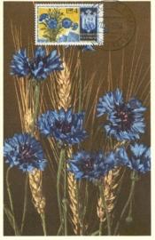 1954 MONACO - Centaurea