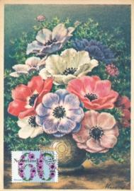 ® 1982 - CATA 1263 Anemoon
