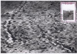 C14 Canon v. Ned. WW I Loopgraven