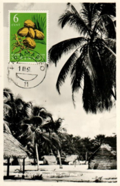 ®®® 1961 - CATA 359 - SURINAME Kokos