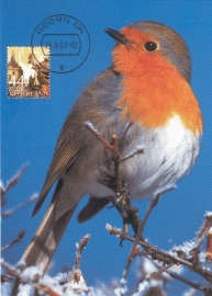 MOOI NEDERLAND 2007 - Red robin Hoorn
