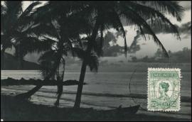 ®®®® 1930 - CATA 129 NED-INDIË Palmbomen