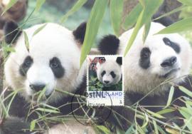 þþþ - Panda 2017 Xing Ya