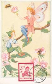 ® 1950 - CATA 563 Kind en bijen