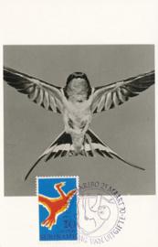 ®®® 1970 - CATA 531 - SURINAME Vogel