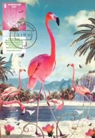 ® 2015 - CATA 3266 Tropisch eiland