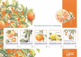 Janneke Brinkman Fruit
