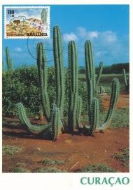 ®® 1990 NVPH 962 NED. ANTILLEN Cactus