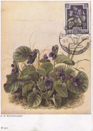 1950 AUSTRIA - Violets