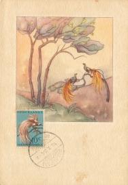 ®®®®® 1954 CATA 27 NNG Paradijsvogel Manokwari