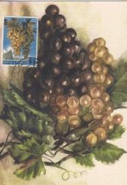 1959 SAN MARINO Grapes