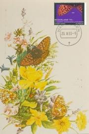 ® 1993 - CATA 1553 Zilvervlek