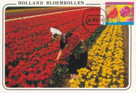 ® 1996 - CATA 1669 Tulp en lippen