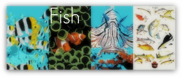 fishbanner.jpg