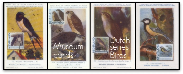 museumdutchbanner.jpg