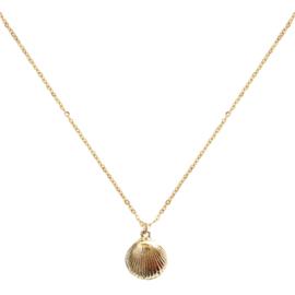 Jozemiek - ocean jewelry -  seashell ketting