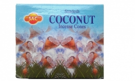 Coconut Kegeltjes ( 10 stuks )