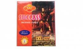 Success Kegeltjes ( 10 stuks )