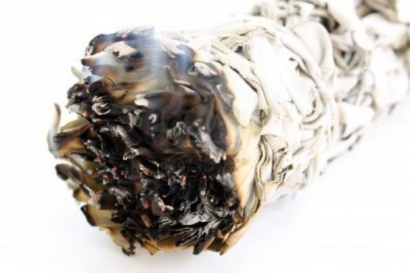 16434692-smoldering-ceremonial-white-sage-smudge-stick.jpg