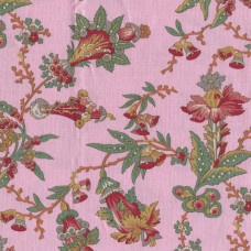 Féline pink