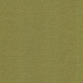 Pindot Grass