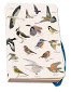 Notebook A6 - Vogels