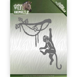 Wild Animals 2: Spider Monkey