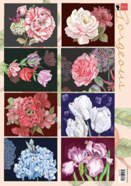 Marianne D Decoupage Gorgious Paintings  A4