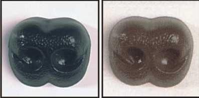 Beren Neus 8mm: Zwart