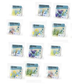 12x Mixpakket - Vijverplanten