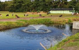 Professionele fontein / vijverbeluchter
