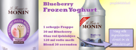 MONIN FRUITMIX Blueberry 1 Liter