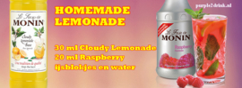 MONIN FRUITMIX Raspberry - Framboos 1 Liter
