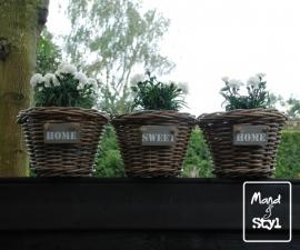Set van 3 plantenbakken (29x20cm)
