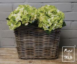 Set Hortensia Wit/Groen klein