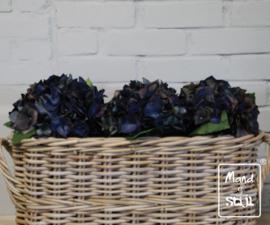 Set Hortensia Diepblauw groot