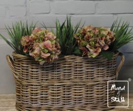 Set Hortensia Roze-Groen/Grass