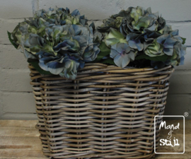Set Hortensia Lichtblauw klein